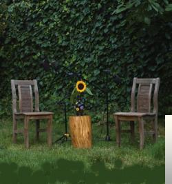 Bahçeden Canlı (2019) albüm kapak resmi