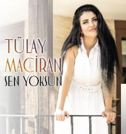 Sen Yoksun (2019) albüm kapak resmi