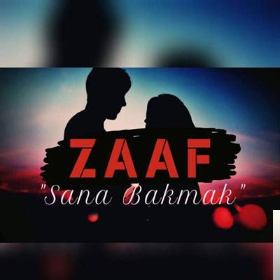 Sana Bakmak (2019) albüm kapak resmi