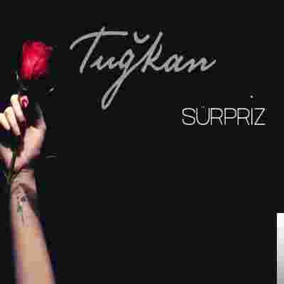 Sürpriz (2020) albüm kapak resmi