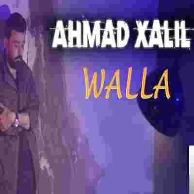 Wallah (2020) albüm kapak resmi