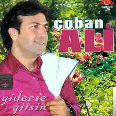 Giderse Gitsin (2009) albüm kapak resmi