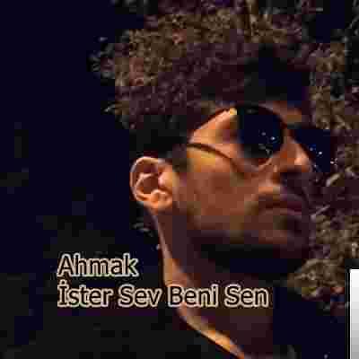 İster Sev Beni Sen (2019) albüm kapak resmi
