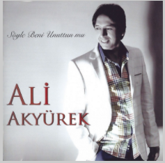 Söyle Beni Unuttun Mu (2013) albüm kapak resmi