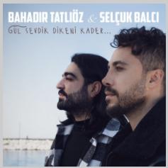 Gül Sevdik Dikeni Kader (2021) albüm kapak resmi