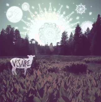 Vesaire (2015) albüm kapak resmi