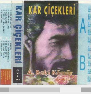 Kar Çiçekleri (1993) albüm kapak resmi