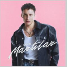 Martılar (2021) albüm kapak resmi
