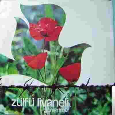 Günlerimiz (1980) albüm kapak resmi