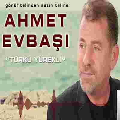 Türkü Yürekli (2019) albüm kapak resmi
