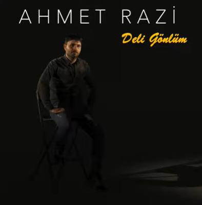Deli Gönlüm (2021) albüm kapak resmi