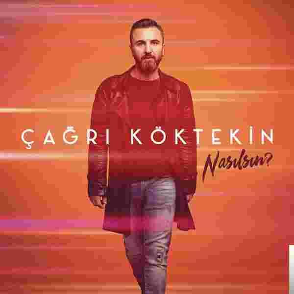 Nasılsın (2017) albüm kapak resmi