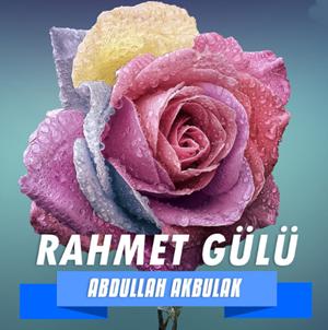 Rahmet Gülü (2013) albüm kapak resmi