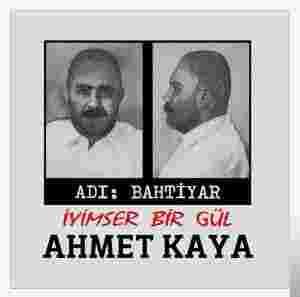 Adı Bahtiyar/İyimser Bir Gül (1989) albüm kapak resmi