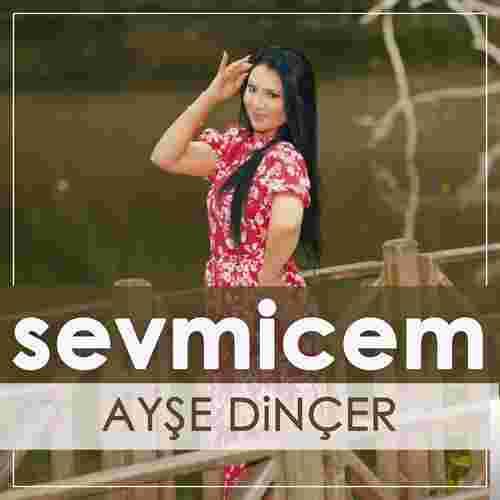 Sevmicem (2019) albüm kapak resmi