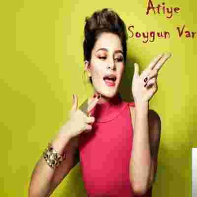 Soygun Var (2013) albüm kapak resmi