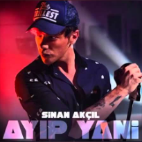 Ayıp Yani (2016) albüm kapak resmi