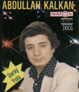 Saray Yolu (1981) albüm kapak resmi