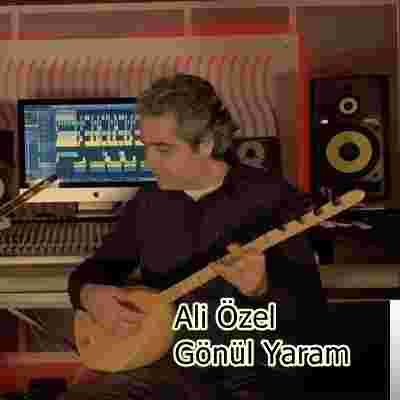 Gönül Yaram (2020) albüm kapak resmi
