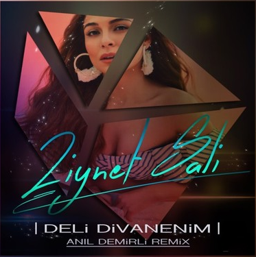 Deli Divanenim (2018) albüm kapak resmi