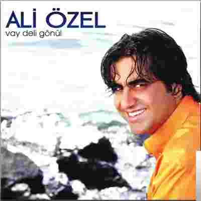 Vay Deli Gönül (2010) albüm kapak resmi