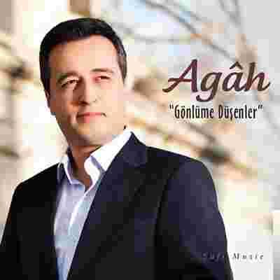 Gönlüme Düşenler (2009) albüm kapak resmi