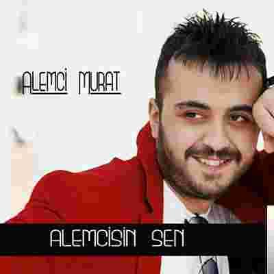 Alemcisin Sen (2009) albüm kapak resmi