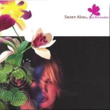 Yaz Bitmeden (2003) albüm kapak resmi