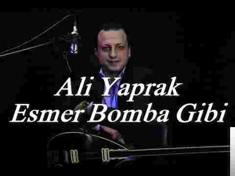 Esmer Bomba Gibi (2018) albüm kapak resmi