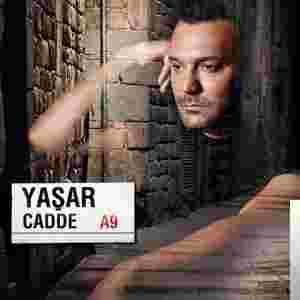 Cadde (2013) albüm kapak resmi