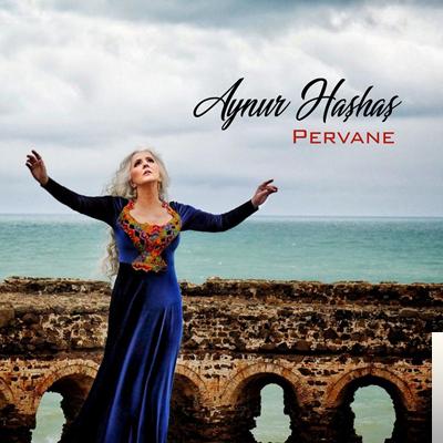 Pervane (2020) albüm kapak resmi