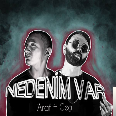 Nedenim Var (2019) albüm kapak resmi