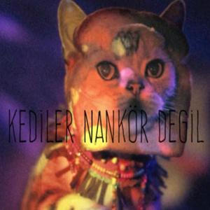 Kediler Nankör Değil (2019) albüm kapak resmi