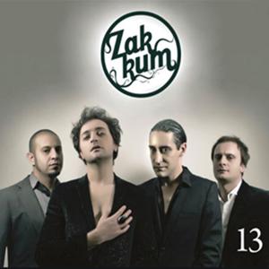 13 (2011) albüm kapak resmi