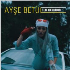 Sen Hayırdır (2021) albüm kapak resmi