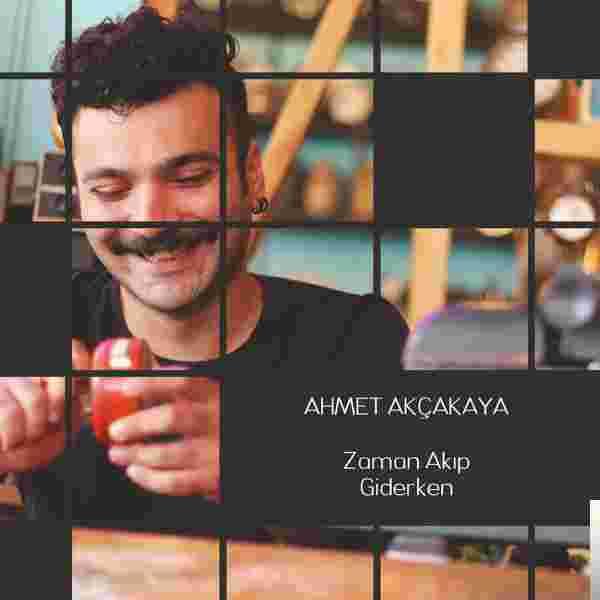 Zaman Akıp Giderken (2019) albüm kapak resmi