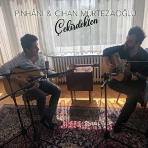 Çekirdekten (2019) albüm kapak resmi