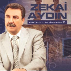 Güzel Anadolumuzdan Şiir Esintileri 2 (2014) albüm kapak resmi