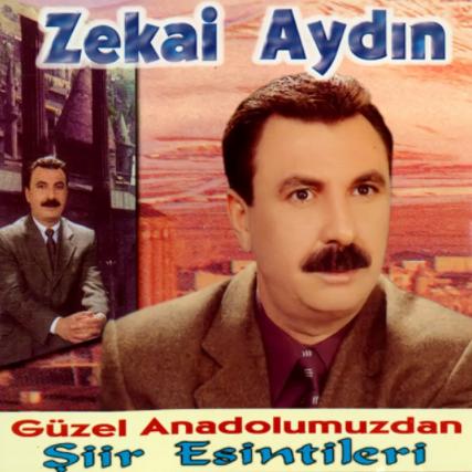Güzel Anadolumuzdan Şiir Esintileri 1 (2002) albüm kapak resmi