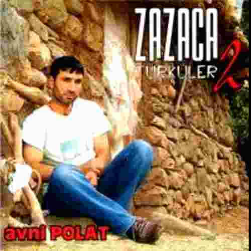 Zazaca Türküler 2 (2004) albüm kapak resmi