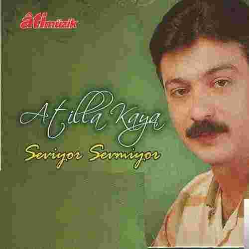 Seviyor Sevmiyor (1989) albüm kapak resmi
