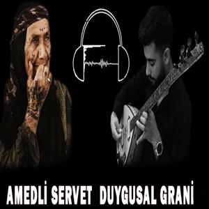 Duygusal Grani (2020) albüm kapak resmi