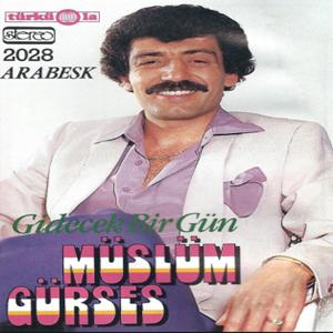 Gidecek Bir Gün (1985) albüm kapak resmi
