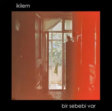 Bir Sebebi Var (2020) albüm kapak resmi