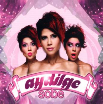 Sobe (2009) albüm kapak resmi