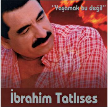 Yaşamak Bu Değil (2003) albüm kapak resmi