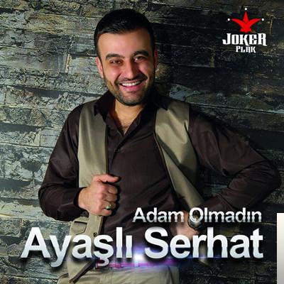 Adam Olmadın (2016) albüm kapak resmi