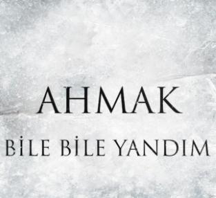 Bile Bile Yandım (2021) albüm kapak resmi