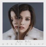 Dönme Dolap (2020) albüm kapak resmi