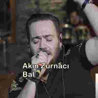 Bal (2019) albüm kapak resmi